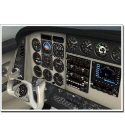 RealAir Beech DUKE (FSX)