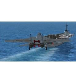 F-14X Tomcat (FSX)